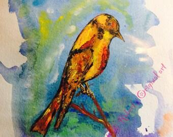 Golden Bower Bird