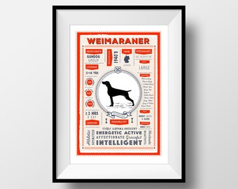 Weimaraner Dog Breed Poster, Vintage Style Dog Infographic Print, Weimaraner Lover Gift, Letterbox Red/Sea Green