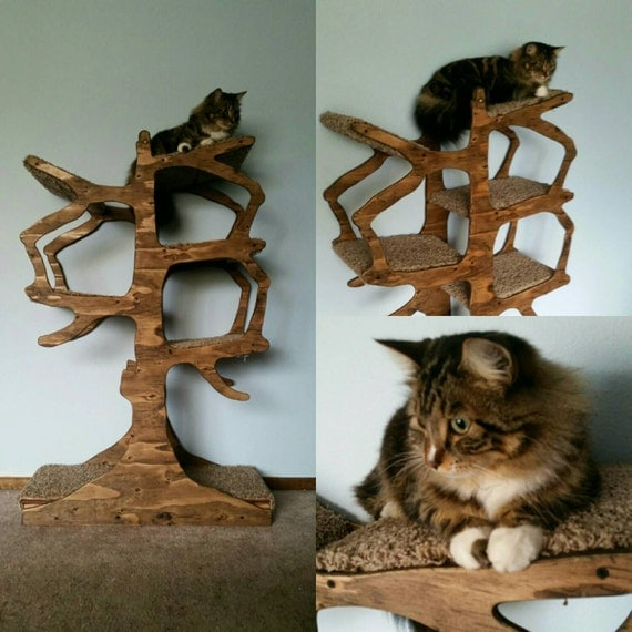 handmade cat tree shaped like a tree. Black Bedroom Furniture Sets. Home Design Ideas