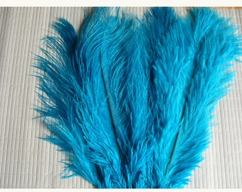 1 feather for various confections * feathers C 103