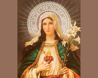 Sagrado Corazon de Maria, Maria Sacred Heart