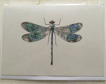 Vintage insect greeting cards