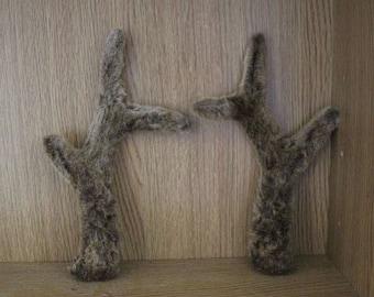 Roe Deer Antlers in Velvet