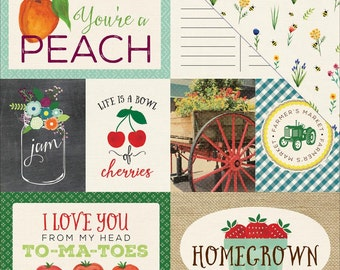 Echo Park Homegrown Journaling Cards 12x12 Sheet