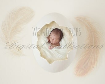 Digital Newborn Photography Egg Prop Backdrop - Cream, with Feathers, for Twins