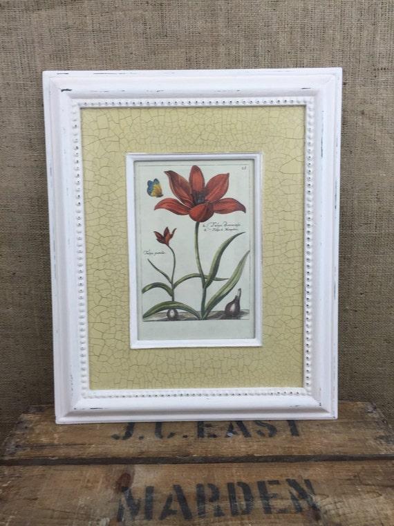 BOTANICAL PRINTS / Vintage Style Framed Botanical Prints / Vintage Botanicals / Large Framed Prints / Cream Crackle Glaze Frames