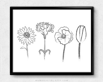 SALE -  Flowers Illustration, Black White Nature, Home Decor, Living Room, Sunflower Tulip, Nursery, Dorm, Drawing Sketch, Modernism