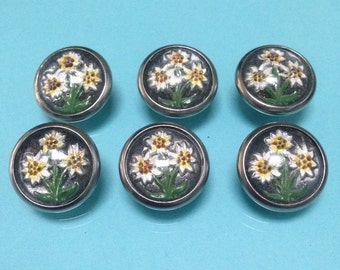 6 Vintage 1930's glass edelweiss handpainted buttons