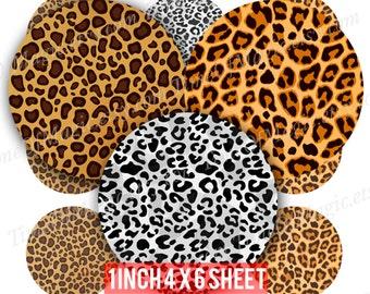"Leopard pattern Digital Collage Sheet 1"" inch 25mm Bottlecap Printable Image Download for pendants  bottle cap party"