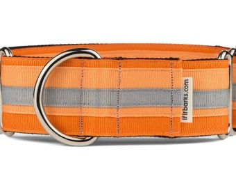 Hoopla Martingale Dog Collar