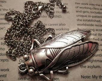 CICADA INSECT NECKLACE (antique silver colourway) entomology bugs insects pendant natural history entomologist rebirth cicadidae