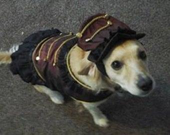 Steampunk Dog coat