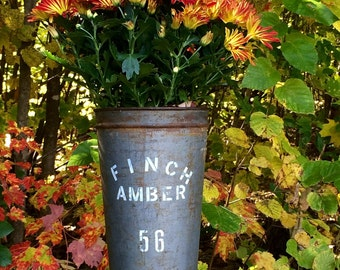 Finch Amber - Repurposed Sugar Maple Bucket flower container