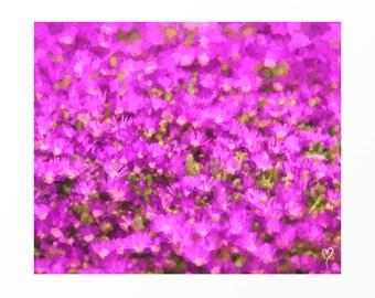 Purple Art Print, Wall Art Gift for Mom, Picture of Purple Flowers, Home Decor, Flower Wall Art, Purple Print