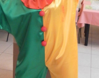 Jumpsuit, suit for holiday, carnival costume, clown costume.