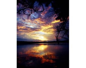 Landscape Sunset photography nature photography Mississippi Sunset wall art 8x10 16x20 Southern Pine Sunset #2