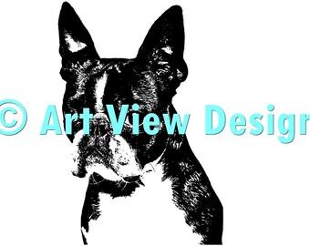 Pattern Boston Terrier ©