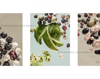 Basil Herb, Beans, Peppercorns, Good Seed Series, Fine Art Print