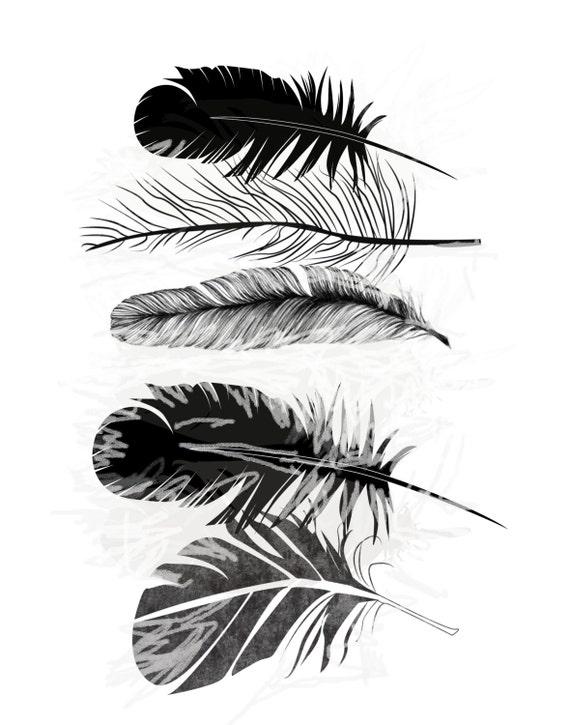 feather art print giclee print scandinavian art feather. Black Bedroom Furniture Sets. Home Design Ideas