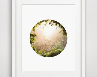 Secret Garden Printable Photo Minimalist Wall Art Circle Photography Print Nature Decor Living Room Artwork