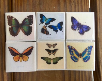 Vintage Inspired Butterfly Magnets (set of 6)