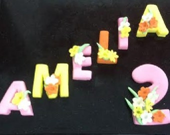 Gluten and Nut Free Name and Age topper Daisies roses Dinosaur Leopard Zebra 2 D letters and Numbers Cake topper set