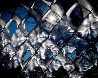 Iced Fence Print