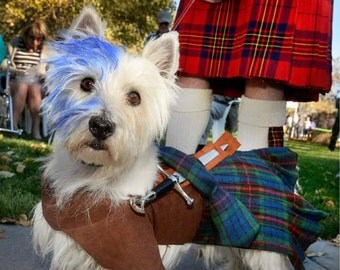 Westie or Scottie Dog Braveheart Costume