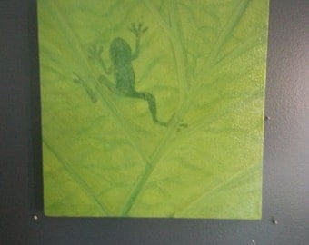 Sunning Frog