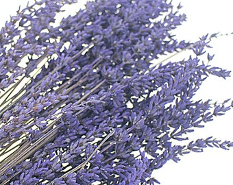 40 Lavender stems Preserved Lavandula Immortal Purple Lavendar Dried Flower Bouquet Floral Locket Jewelry Filler, Craft DIY Supplies