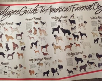 Guide to America's Favorite Dogs Breed Poster 2'x3'