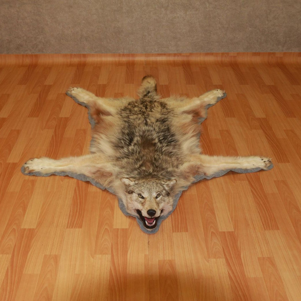Siberian Grey Wolf Taxidermy Rug Carpet For By STORETAXIDERMY