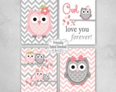 Printable Owls Baby Nursery Wall Art Decor in Pink andGrey Owls Baby Girl Infant Child Kids ~ DIY Instant Download ~ 4 8x10 Prints