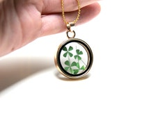 FREE SHIPPING - Real Four Leaf Clover Necklace, Clover Jewelry, Clover Necklace, Shamrock Jewelry, Clover, Shamrock Necklace, 4 leaf Clover