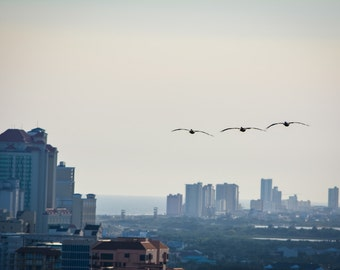 Going Home, Travel Photography in Gulf Shores, Alabama