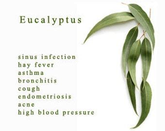10 ml Eucalyptus Oil