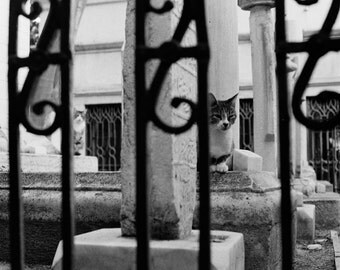 Istanbul photography, black and white film photography