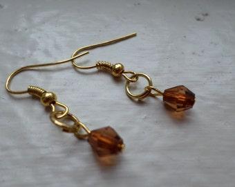 Rustic Brown Drop Earrings