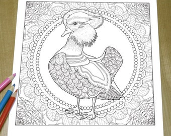 Exquisite Mandarin Duck - Adult Coloring Page Print