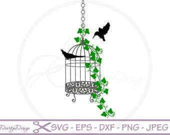 Bird cage svg, Bird Cage decor Cut Files, Birdcage Ivy Bird files for Silhouette Cricut machines instant download, SVG files, DXF files Bird
