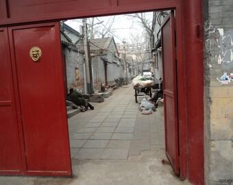 "003 - Photography: Beijing, China  - 20"" x 30"" (508 x 762mm)"
