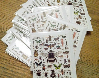 87 Invertebrates - Greetings Card