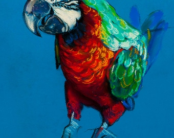Beautiful parrot.Instant download.JPG file for printing an original pastel painting.