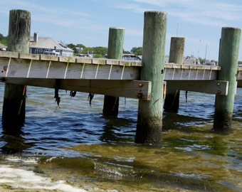 Dock Fishing