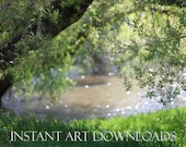 Digital Download Photography Landscape Lake Bokeh Background Backdrop Stock Photo Nature Green Enchanted ForestTrees Spring Country Picture
