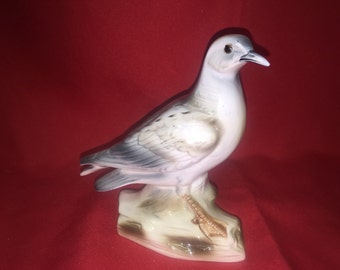Sea Gull Shafford Bird Collection 34K1