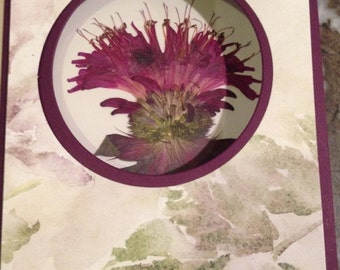 Earth Laughs in Flowers- Ralph Waldo Emerson--Pressed Flower Window Greeting Cards