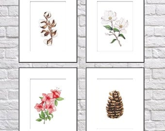 SET OF 4 5x7 Nature Prints, Southern Prints, Illustrations, Botanicals