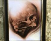 Original Skull and bone P...