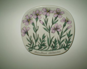 Arabia of Finland Botanica plate, dianthus deltoides ( maiden pink in english )